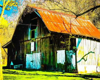 Red Barn Bellbuckle TN