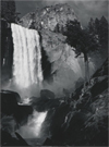Sight and Feeling: Photographs by Ansel Adams